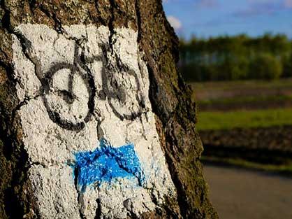 Le gîte la Bignone vous loue des vélos pour profiter de la nature