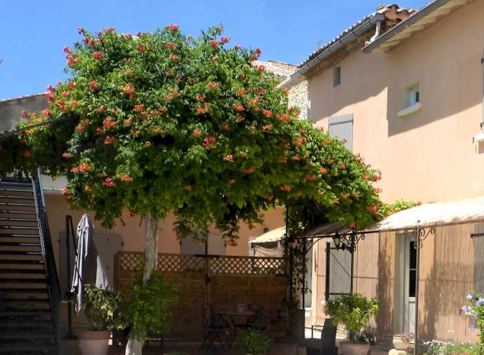 Gite et chambres d'hôtes la Bignone dans le Gard